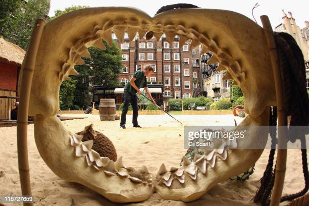 A gardener rakes the sand in the garden of the Goring Hotel in Victoria on June 9 2011 in London England The garden of the Goring Hotel where...