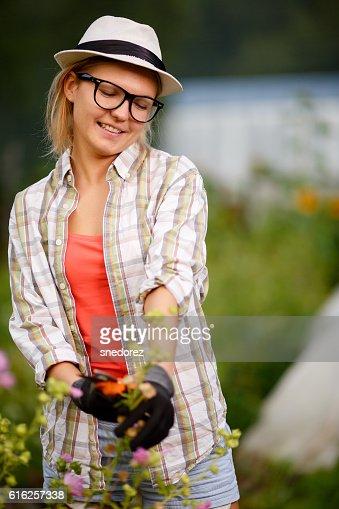 Gardener woman cutting top of flower plants : Foto de stock
