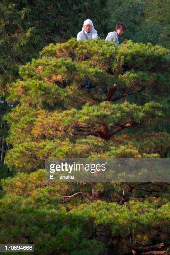 Gardeners at Nanzen-ji Temple in Kyoto, Japan : Stock Photo