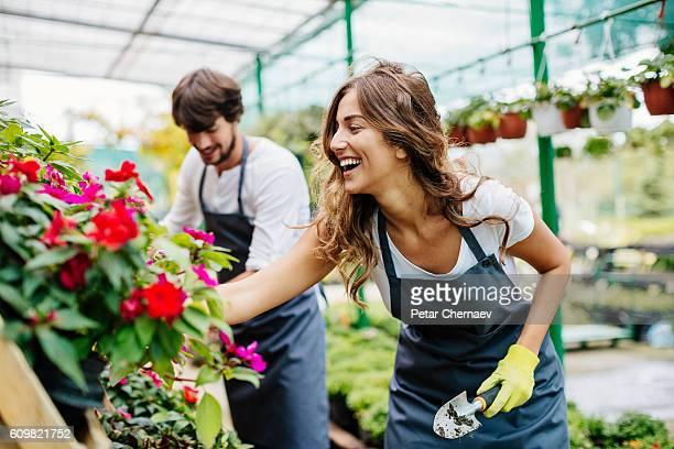 Gardeners working in a greenhouse