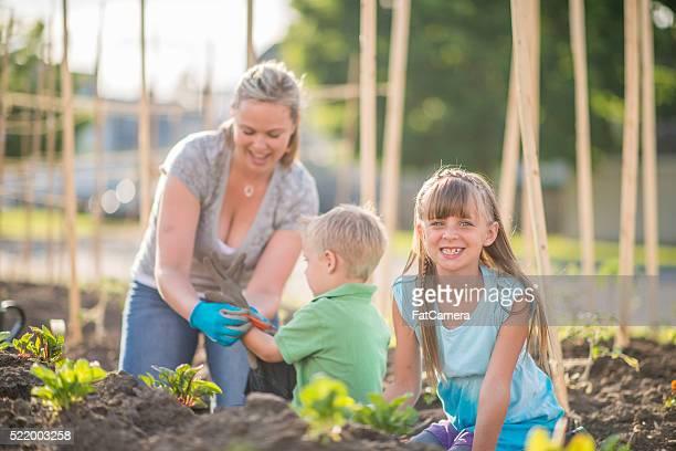 Jardinagem em família