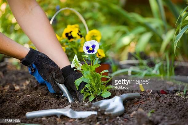Gärtnern Hände