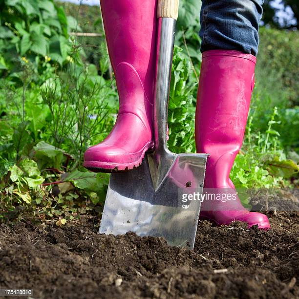Jardinage Rose Wellies