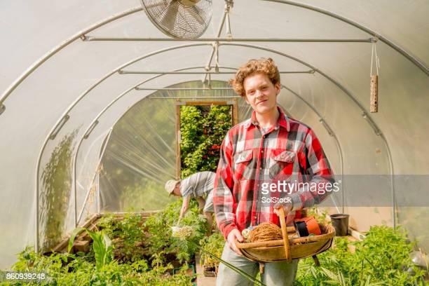 Gardening In The Farm Greenhouse