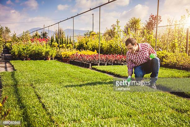 Gardening in the fields
