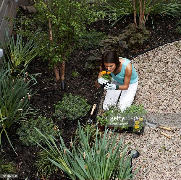 Jardinage dans un jardin urbain