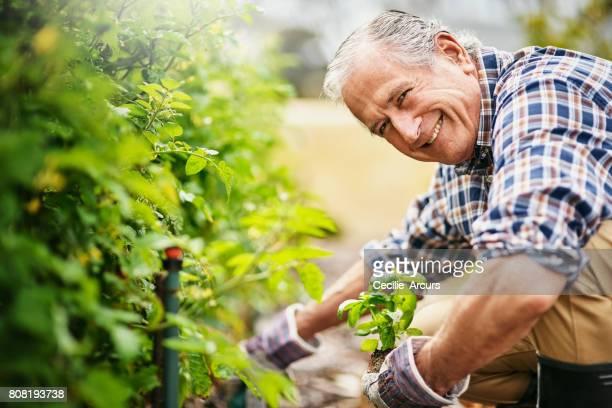 Gartenarbeit hält mich aktiv und glücklich