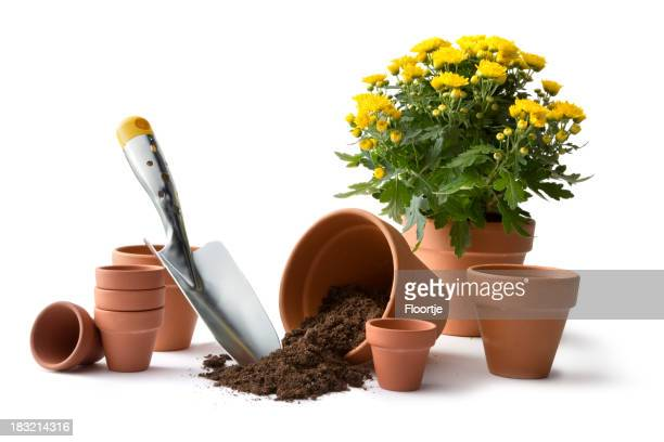 Plant pot stock photos and pictures getty images for Gardening services