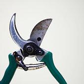 Gardening secateurs, blades open, close-up