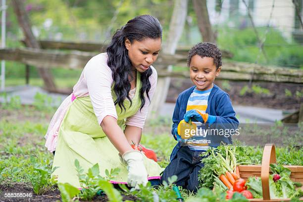 Gardening Together on Mother's Day