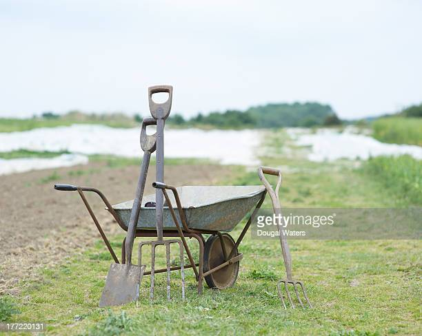 Gardening tools and wheel barrow on small holding.