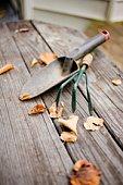 Gardening tools on bench