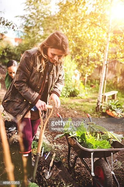 gardening volunteer woman