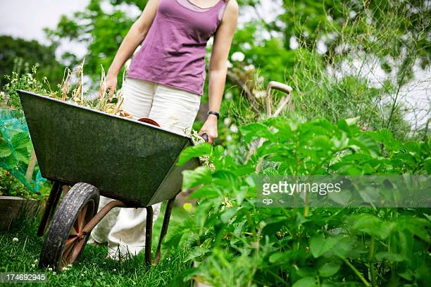 Gardening with Wheelbarrow