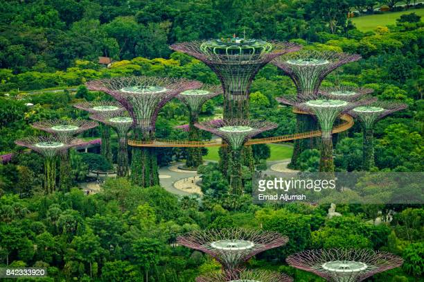 Gardens by the Bay, Singapore - August 19, 2017