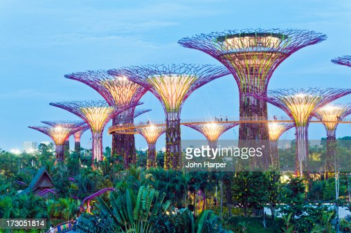 Gardens By The Bay Singapore Stock Photo Getty Images