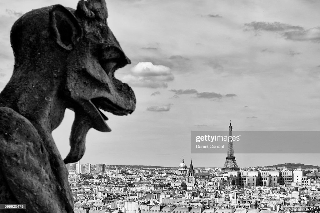 Gargoyle of the Notre Dame Cathedral, Paris, France : Stock Photo