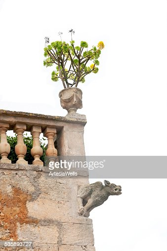 Gargoyle on old building : Stock Photo