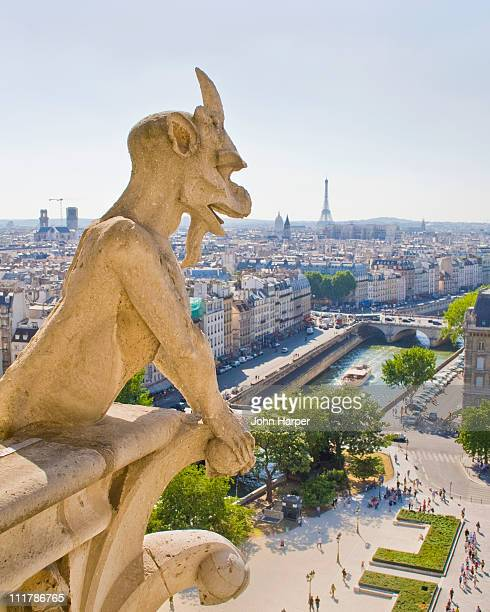 Gargoyle, View from Notre Dame, Paris