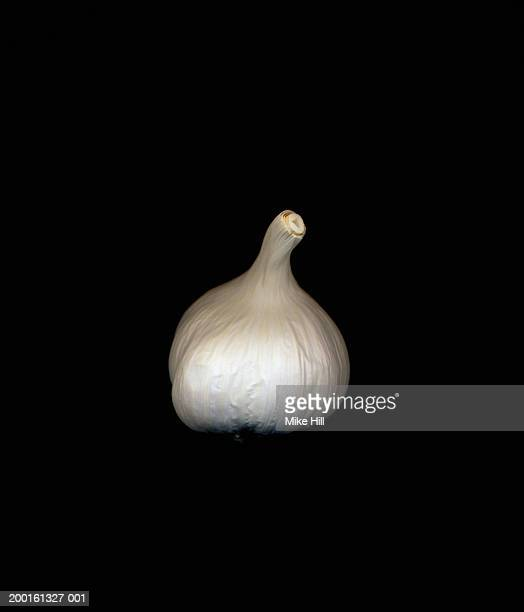 Garlic bulb against black background, close-up