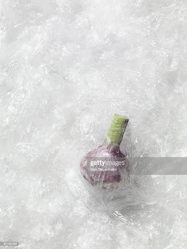 garlic bulb wrapped in excessive cling film : Stock Photo