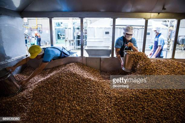 Garlic is removed from a dehydrating oven at the Nithi Foods Co factory in the San Pa Tong district of Chiang Mai Thailand on Tuesday May 23 2017...