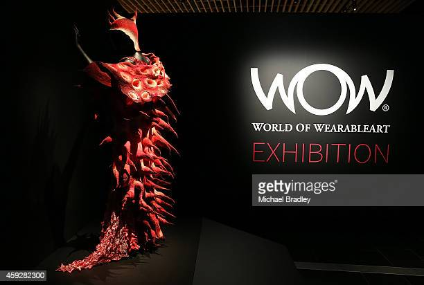 Garments on display at the Auckland War Memorial Museum's World of Wearable Art exhibition opening at Auckland Museum on November 20 2014 in Auckland...