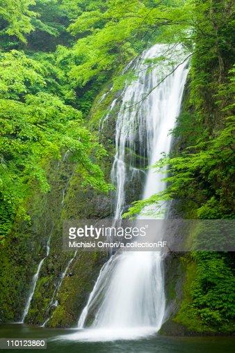 Garou Waterfall Flowing Water Long Exposure Tree