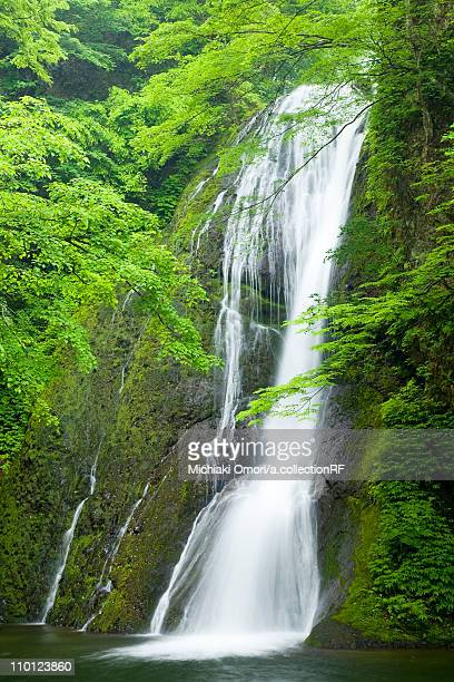Garou Waterfall Flowing Water Long Exposure Tree