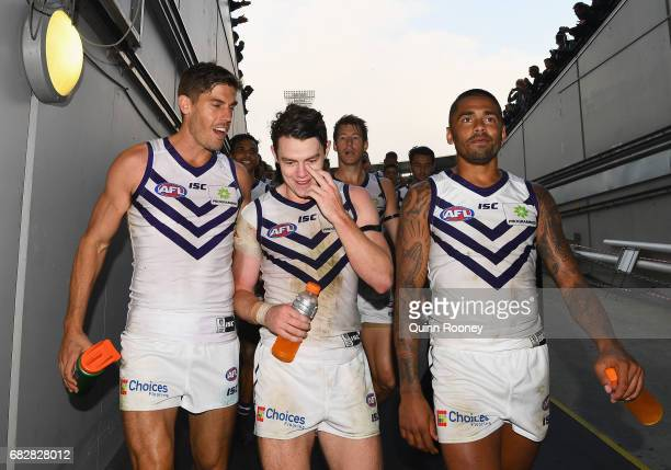 Garrick Ibbotson Lachie Neale and Bradley Hill of the Dockers celebrates winning the round eight AFL match between the Richmond Tigers and the...