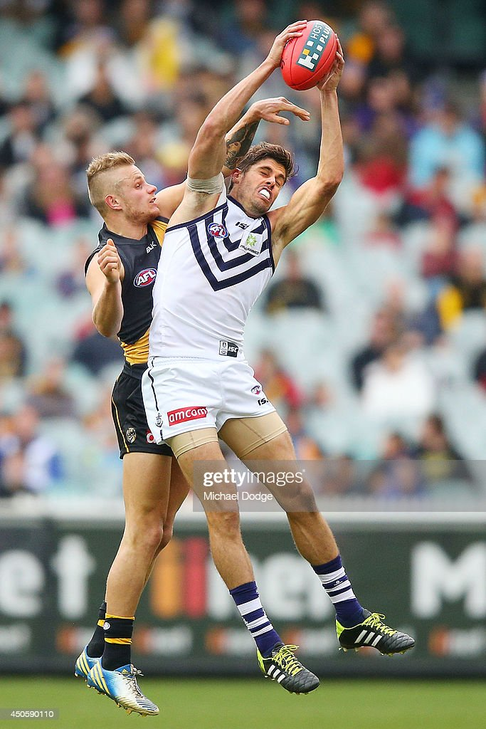 Garrick Ibbotson marks the ball against Brandon Ellis of the Tigers during the round 13 AFL match between the Richmond Tigers and the Fremantle Dockers at Melbourne Cricket Ground on June 14, 2014 in Melbourne, Australia.