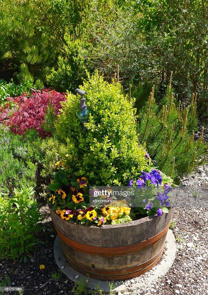 Garten, Gartengestaltung, Sommer, Pflanzen, Blumen, Casa : Foto De Stock