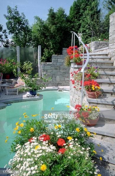 garten mit swimming-pool von deborah sasson und lebensgefährte d, Garten Ideen