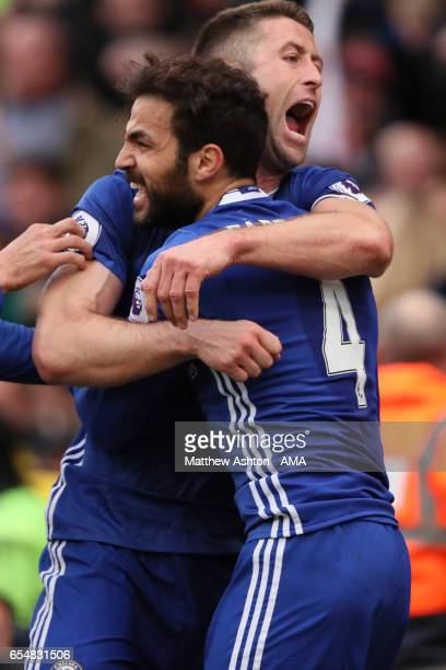 Gary Cahill of Chelsea celebrates scoring a goal to make the score 12 with his teammate Cesc Fabregas during the Premier League match between Stoke...