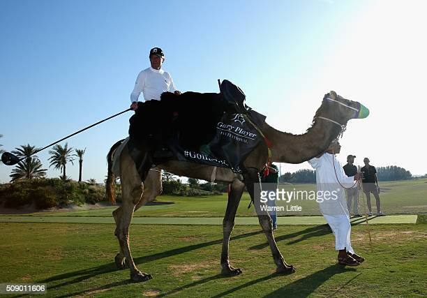Gary Player of South Africa takes part in the worlds first camel golf after the Gary Player Invitational Abu Dhabi at Saadiyat Beach Golf Club on...