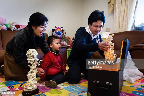 Gary Zeng an engineer seen with his wife Spring Liu 41 and their son Andrew inside their apartment in Guangzhou China February 4 2012 Zeng has just...