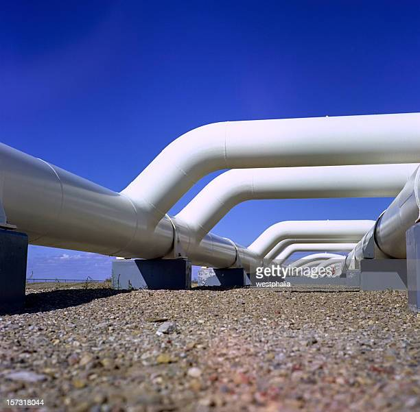 Gas collection facility with white pipes