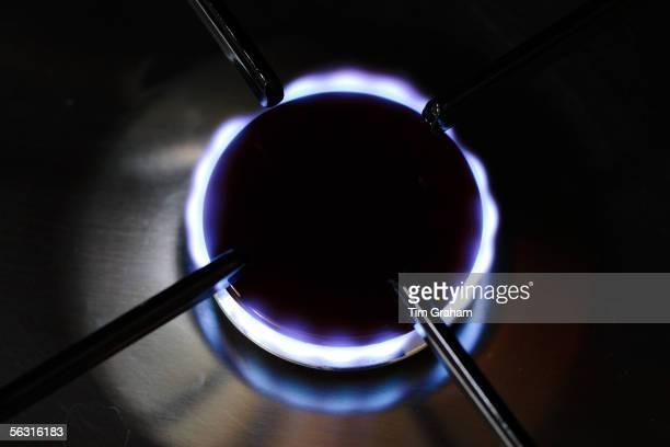 Gas flame on cooker hob England United Kingdom