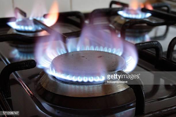 Gas ring burner