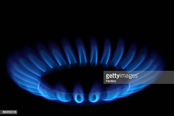 Gas Stove (Blue Flames on Black - Ring of Fire)