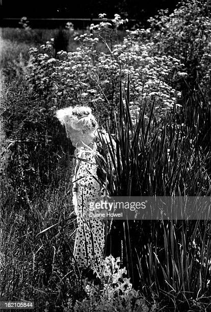 JUN 21 1977 JUL 3 1977 Gathering cattails in suburban gulley Mrs Irene Wheeler is almost hidden by the reeds