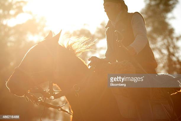 Gaucho and 'domador' or horse trainer Luis Daniel Cerrudo trains a young horse on the Estancia La Argentina farm outside of San Antonio de Areco...
