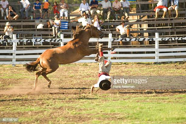 Gaucho Falling off his horse