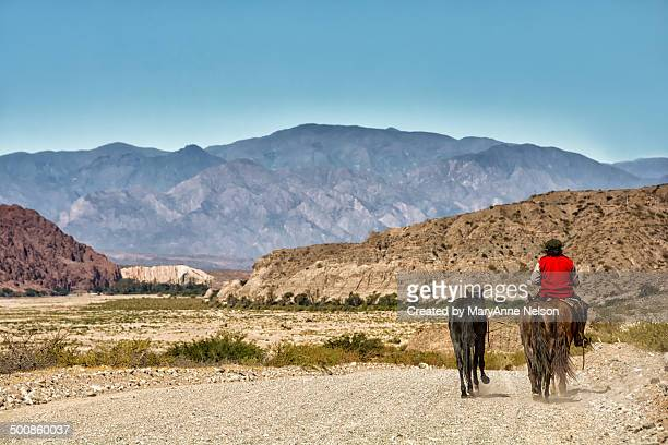 Gaucho in the Andes