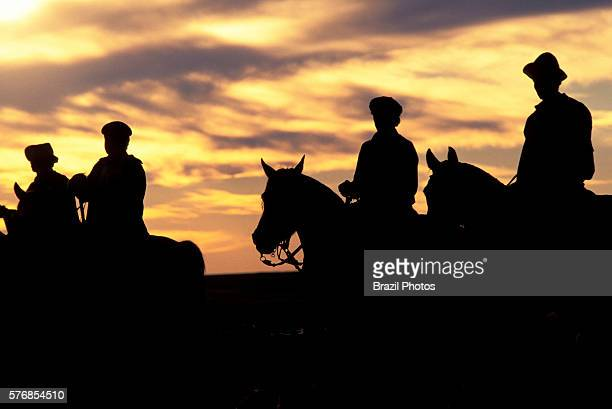 Gauchos on horses in Uruguay country people experienced in traditional cattle ranching work the gaucho is an equivalent of the North American cowboy...