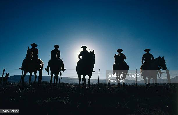 Gauchos or South American cattlemen roam the pampas as horsemen and cowhands Gauchos on horseback