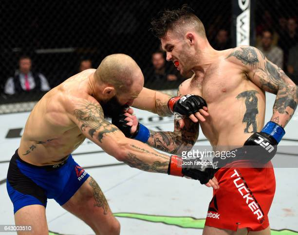 Gavin Tucker of Canada punches Sam Sicilia in their featherweight fight during the UFC Fight Night event inside the Scotiabank Centre on February 19...