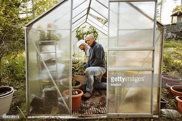 Gay couple in small greenhouse