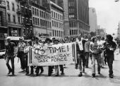 A gay rights march in New York in favour of the 1968 Civil Rights Act being amended to include gay rights