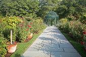 Stone path through garden with gazebo.